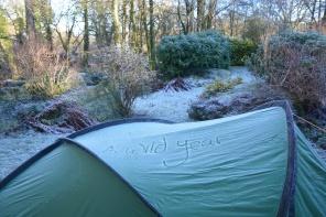 wild-year-tent-ice